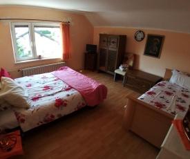 Guest house Carmen